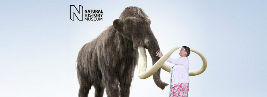 Woman stood near Mammoth at Natural History Museum green screen photography